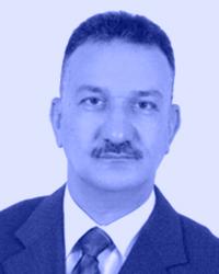 Mohammed M. El-Mahy