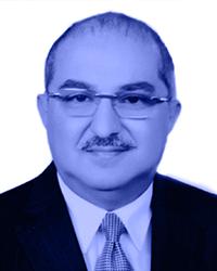 Tarek Abdalla El-Gammal